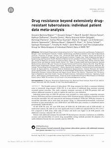 (PDF) Drug resistance beyond extensively drug-resistant ...