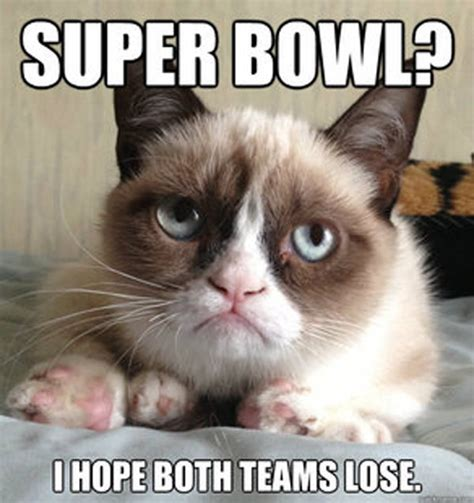 Best Of Grumpy Cat Meme - grouchy cat memes image memes at relatably com