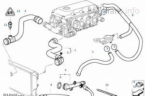 Bmw E46 M43 Engine Diagram