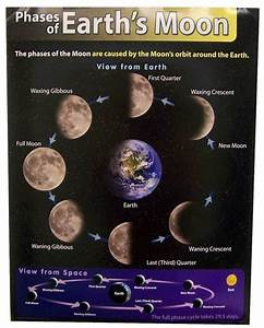 Phases Of Earths Moon Learning Chart  1 95