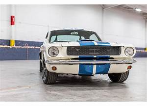 1966 Shelby GT350-H - The Mustang Source