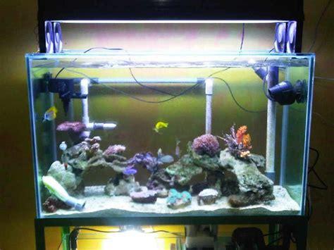 jual akuarium kaca custom design kualitas terjamin