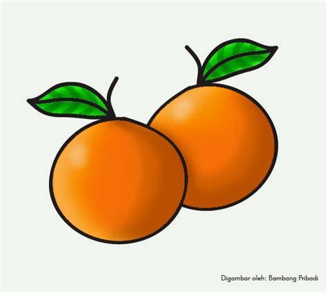 cara mewarnai buah jeruk belajar menggambar dan mewarnai