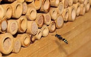Tiere Im Insektenhotel : das insektenhotel f llt sich weiter foto bild tiere wildlife insekten bilder auf ~ Whattoseeinmadrid.com Haus und Dekorationen