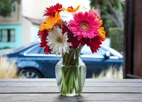 How To Preserve Flowers In A Vase by How To Keep Cut Flowers Fresh The Farmer S Almanac