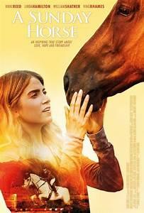 Cheval De Guerre Streaming Vf : a sunday horse film gratuit en streaming vf ~ Maxctalentgroup.com Avis de Voitures