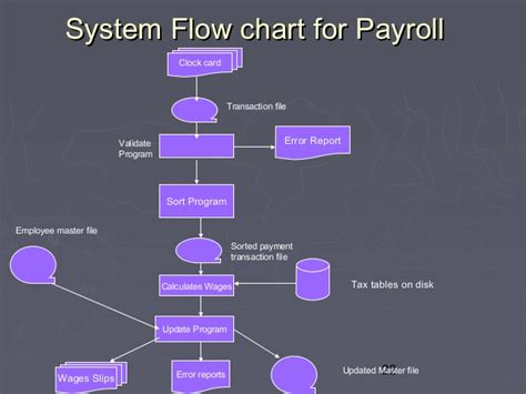 payroll sample ch 12 describing information system