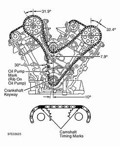 Diagram Showing Timing Chain  U0026 The Gears  With The Timing