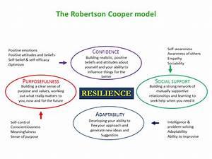 Robertson Cooper model.png | Teams and Leadership