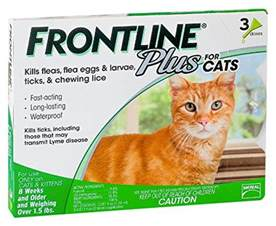 effective cat poison is garlic posionous to cats
