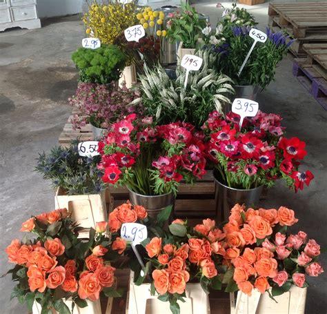 bloemen op ibiza nederlandse bloemen op ibiza ibiza vandaag