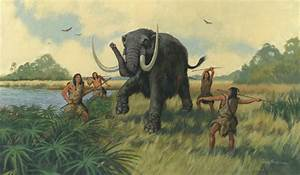 First humans in Florida lived alongside giant animals ...