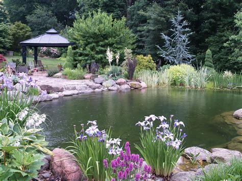 Garden Pool : Ramblin' Through Dave's Garden
