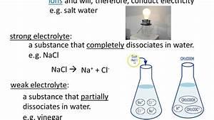 7 Electrolyte Vs Nonelectrolyte