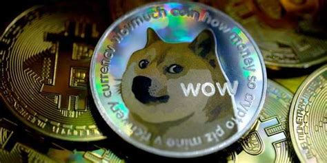 3 dogecoin investors detail their experiences buying the ...