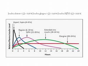 Basal Insulin Berechnen : insulinizaci n basal r pida ~ Themetempest.com Abrechnung