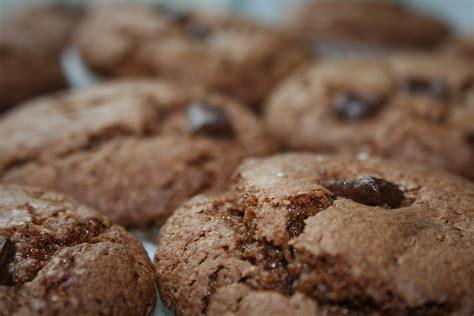 dessert avec chocolat au lait dessert avec lait v 233 g 233 tal et chocolat rue des enfants