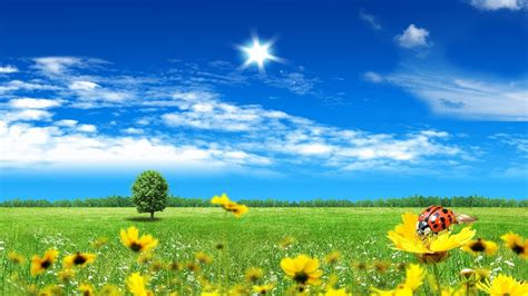 Backgrounds Spring Wallpapers ~ Top Best HD Wallpapers for