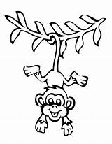 Coloring Pages Monkey Drawing Hanging Tree Chameleon Puppy sketch template