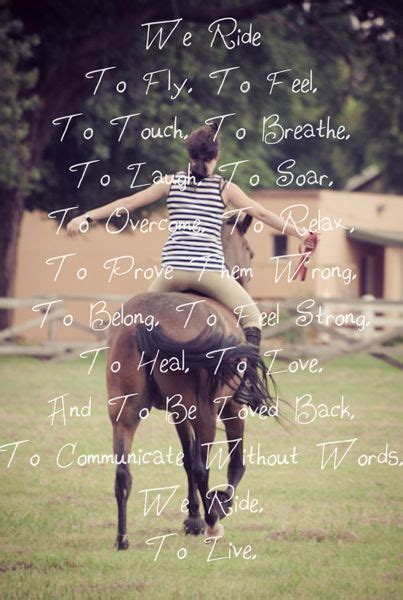 equestrian quotes  pinterest horse quotes horse girl