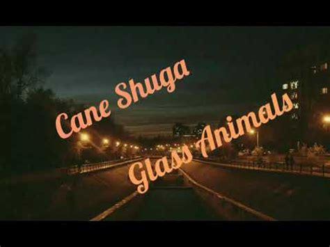 cane shuga glass animals lyrics youtube