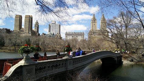 new york web central park central park revisited in new york city visions