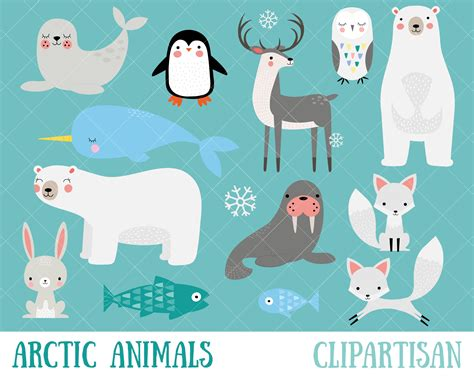 Pin Renata Evoras Illustration Polar Animals