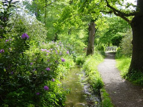 woodland gardening waterhouse woodland garden bushy park the royal parks