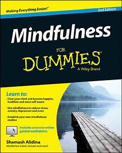 Learn To Do What   10 Strange  U0026 39 For Dummies U0026 39  Manuals