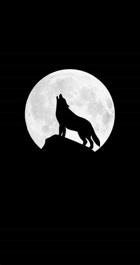 Amoled Wallpaper 4k Wolf by Howling Wolf Iphone Wallpaper Iphone Wallpapers