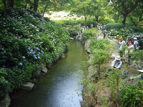 長居 植物園