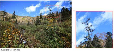 tamron sp 15 30mm f 2 8 di vc usd tamron sp 15 30mm f 2 8 di vc usd lens sle images