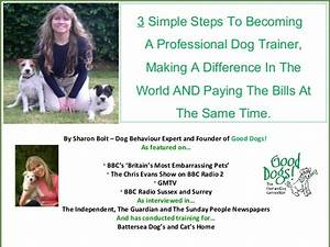 how to become a professional dog trainer in 3 simple steps With become a dog trainer
