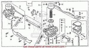 Honda Gcv190 Parts Diagram