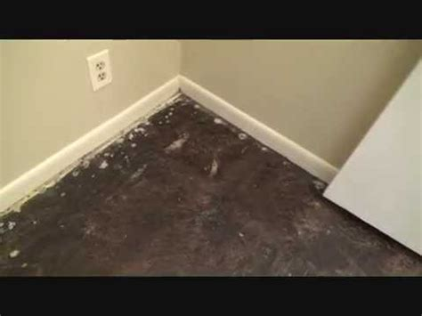 removing black tar adhesive   concrete floor