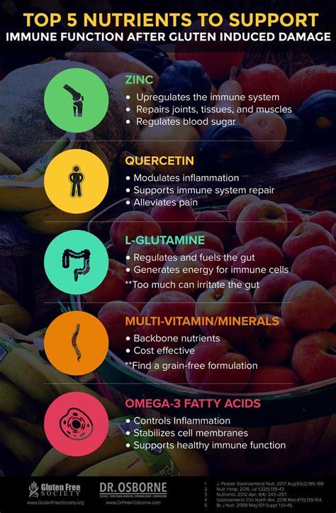rebuilding  immune system  gluten gluten