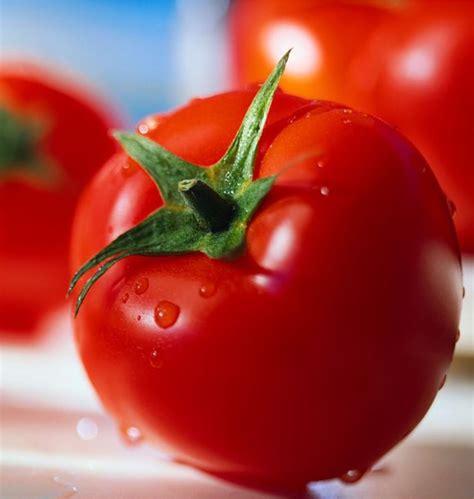 Kesehatan Kandungan Wanita Cara Mudah Mengatasi Jerawat Dan Komedo Dengan Tomat