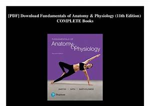 Fundamentals Of Anatomy And Physiology Pdf Martini