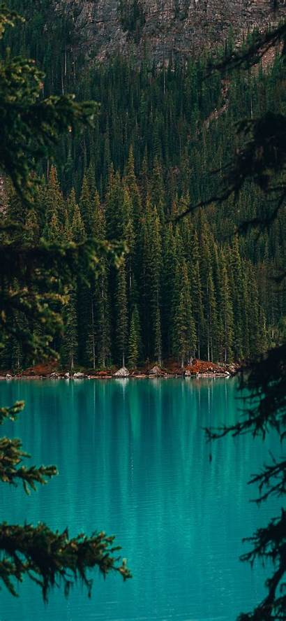 Iphone Nature Forest Lake Iphone11 Desktop