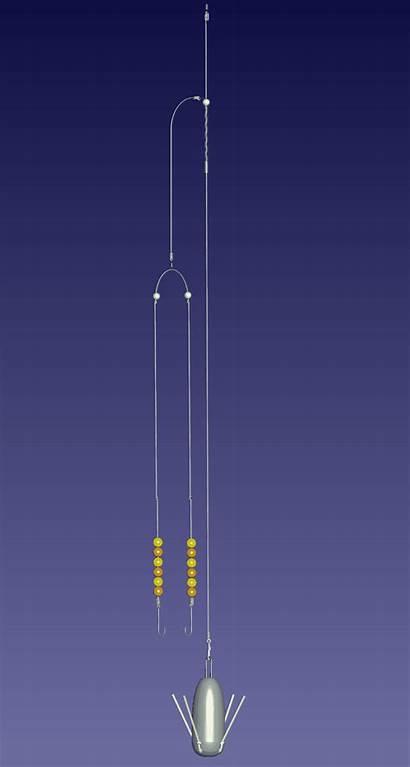 Wishbone Rig Rigs Fishing Sea Reels Fish