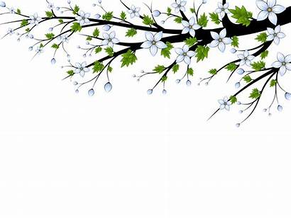Flowers Branch Backgrounds Powerpoint Ppt Clipart Templates