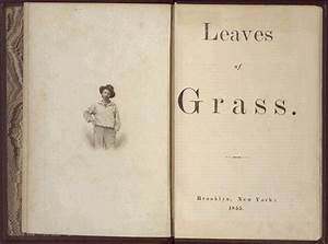 Whitman, Melville, and Baseball « Our Game