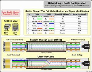 8 Pin Ethernet Wiring Diagram