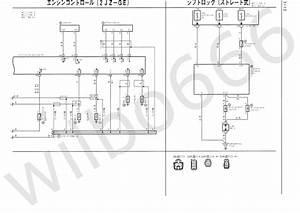 E36 Ls1 Wiring Diagram