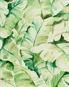 Banana leaf wallpaper | Wallpapers (for computer ...