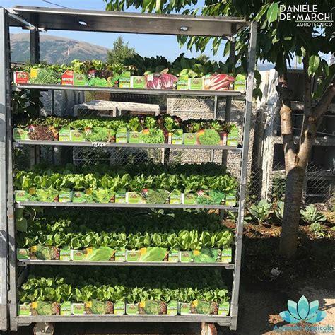 l orto in terrazzo coltivare l orto anche sul balcone il capoluogo