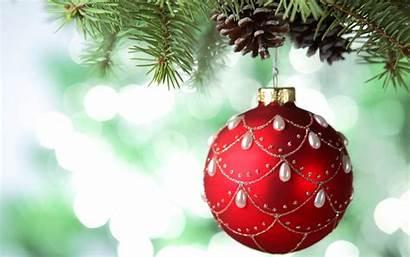 Snow Ornaments Bokeh Cones Leaves Desktop Wallpapers