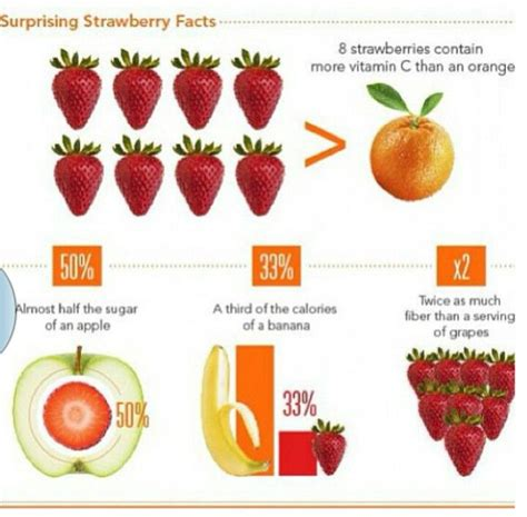 strawberry facts 25 best ideas about strawberry facts on pinterest stacked pots strawberry plants for sale