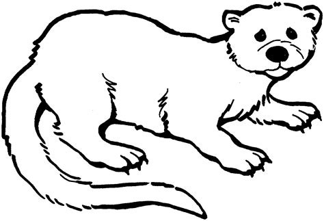 Otter Kleurplaat by Free Otter Coloring Pages