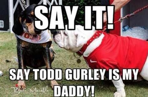 images  georgia dawgs  pinterest
